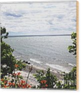 Lake Erie Beach At Sturgeon Point Wood Print