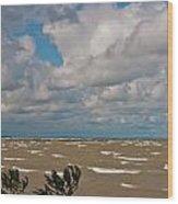 Lake Erie Storm 2368 Wood Print