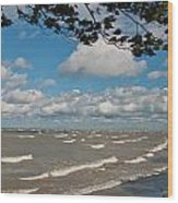 Lake Erie Storm 2371 Wood Print