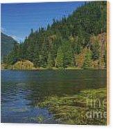 Lake Errock Wood Print