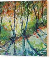 Lake Forest Hills Wood Print