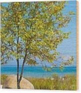 Lake Huron Seashore Wood Print