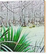 Lake Martin Swamp View Wood Print