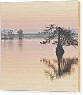 Lake Mattamuskeeet Sunrise Wood Print