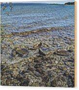 Lake Michigan 1 Wood Print