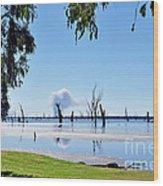 Lake Of The Black Stumps.. Tree Framed Wood Print