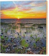 Lake Okeechobee Sunset Wood Print