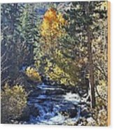 Lake Sabrina Creek Wood Print