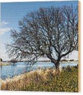 Lake Serene Wood Print