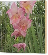 Lake Shore Flowers Wood Print