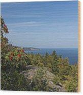 Lake Superior Palisades 2 Wood Print