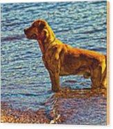 Lake Superior Puppy Wood Print
