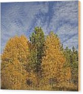 Lake Tahoe Aspen Sky Wood Print