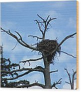 Lake Tahoe Eagle Nest Wood Print