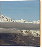 Lake Wakatipu Wood Print
