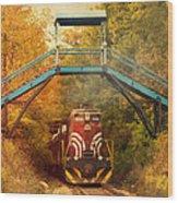 Lake Winnipesaukee New Hampshire Railroad Train In Autumn Foliage Wood Print