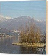 Lake With Island Wood Print