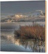 Lake With Pampas Grass Wood Print