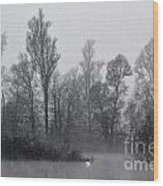 Lake With Trees Wood Print