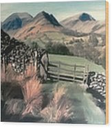 Lakeland View Wood Print