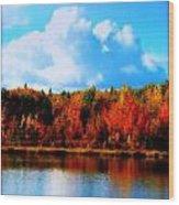 Lakeside Drama Ll Wood Print