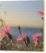 Lakeside Flowers Wood Print