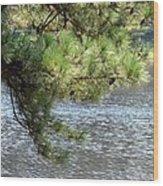 Lakeside Pines Wood Print