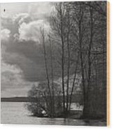 Lakeside Storm Passing Wood Print