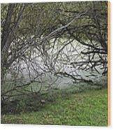 Lakeside View 1 Wood Print