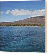 Lanai Coastline Wood Print