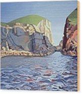 Land And Sea No I - Ramsey Island Wood Print