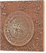 Land Survey Marker Wood Print