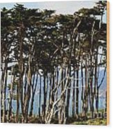 Lands End Trees Wood Print