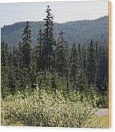 Landscape - 0017 Wood Print