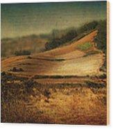 Landscape #20. Winding Hill Wood Print