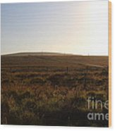 Landscape At Point Reyes California . 7d9958 Wood Print by Wingsdomain Art and Photography