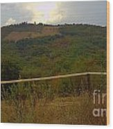 Landscape Greve In Chianti Wood Print by Nettie Pena