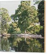 Landscape Tree Reflections Wood Print