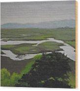 Landsend  No. 2 Wood Print