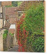 Lane And Ivy In St Cirq Lapopie France Wood Print