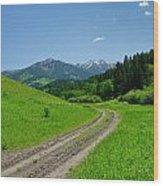 Lane View Of Crazy Mountains Wood Print