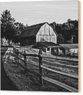 Langus Farms Black And White Wood Print
