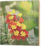 Lantana Blank Greeting Card Wood Print