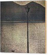 Lantern At The Lake Wood Print by Joana Kruse