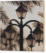 Lanterns And Fronds Wood Print