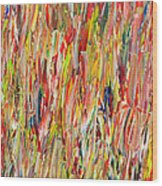 Large Acrylic Color Study 2012 Wood Print