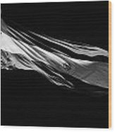 Large Argentinian Flag Flying In The Wind Against A Blue Sky Republic Of Argentina Wood Print
