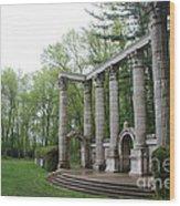 Large Statute Wood Print