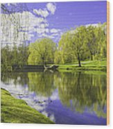 Larz Anderson Hdr Wood Print