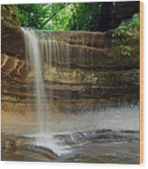Lasalle Canyon Waterfall Wood Print
